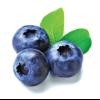 Buy best online blue berry in dubai and UAE