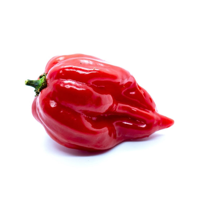 Habanero chilli red buy online in Dubai and UAE