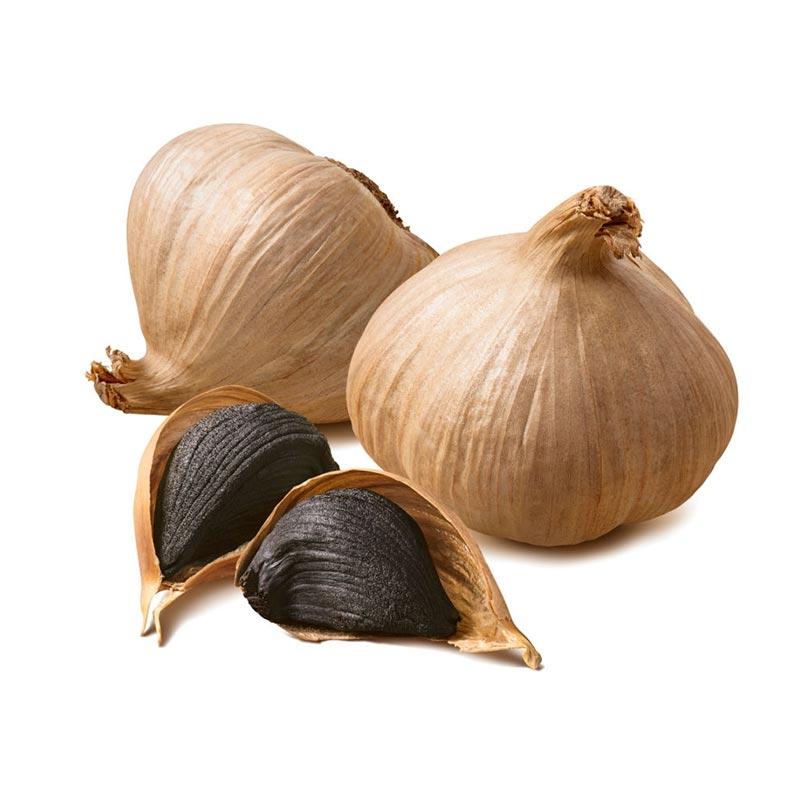 Buy best online ʙblack garlic in dubai and UAE